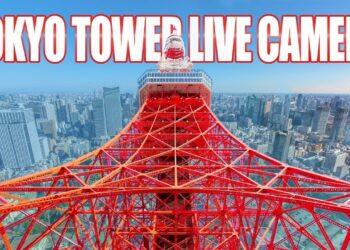 tokyo in diretta i grattacieli d 350x250 - Live, programma meteo e con webcam dal Mondo
