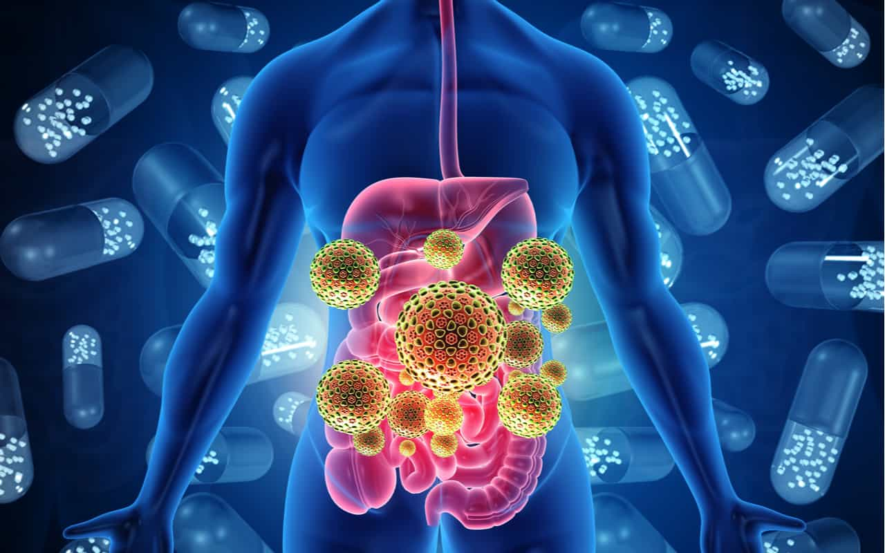 virus intestino - Scoperti nuovi 140 mila virus nell'intestino umano