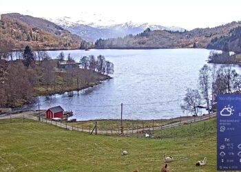 webcam meteo di nordfjordhjort s 350x250 - Todi, Umbria. Meteo webcam