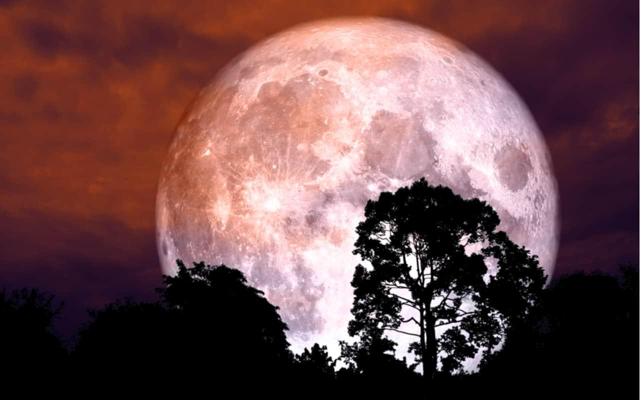 Strawberry Moon - Strawberry Moon, stanotte avremo la Super Luna color fragola. Poi niente per un anno