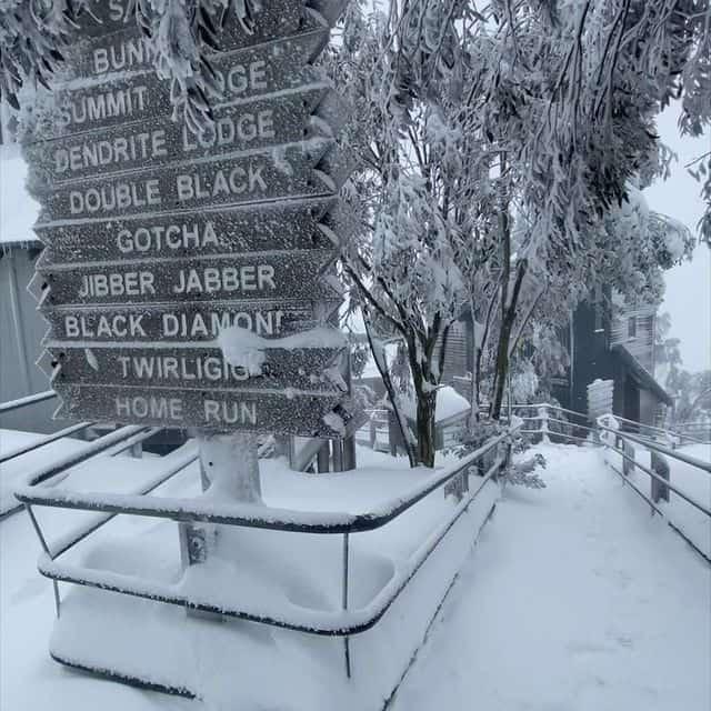Gran neve