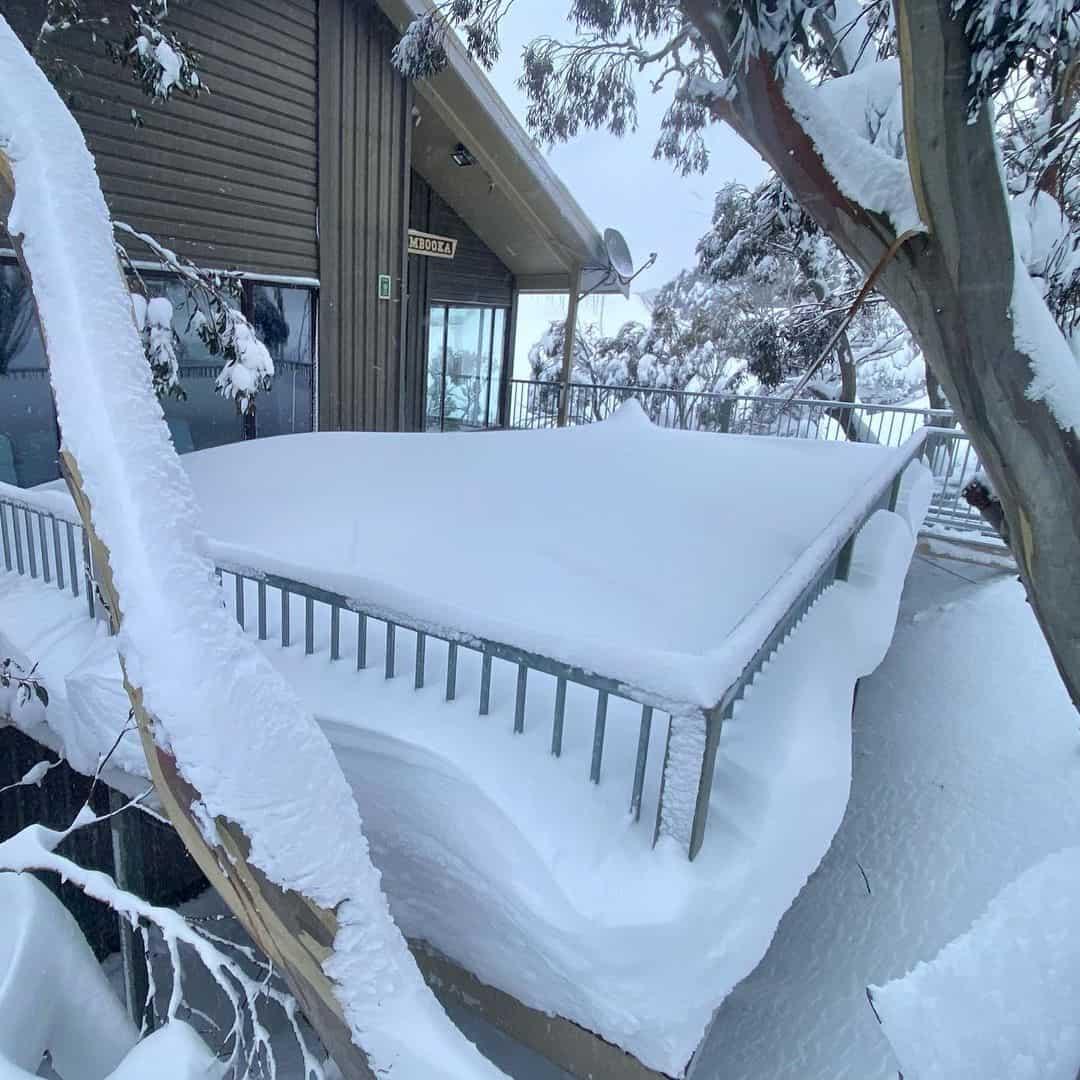 222567440 301619901754004 8307082315568366078 n - Meteo METEO dall'Australia sotto fortissime nevicate