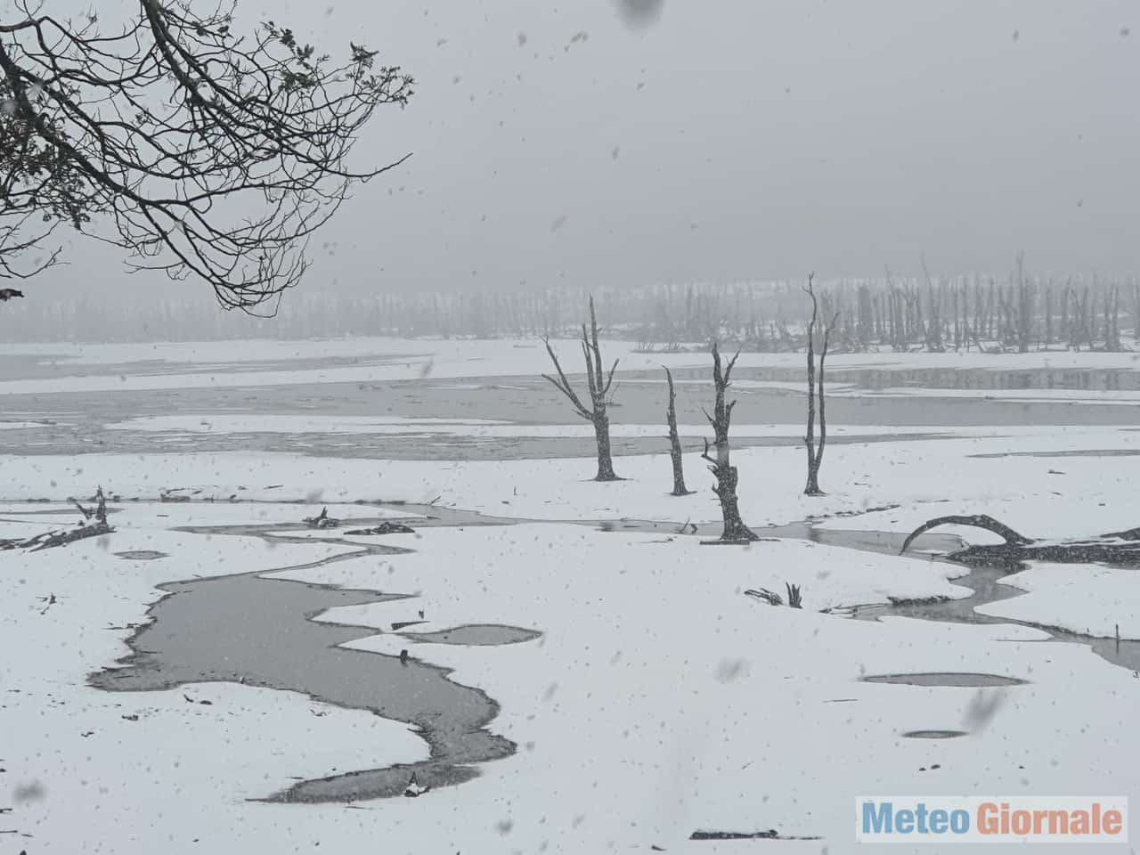 tasmania3 - Magia invernale australe. Meteo con neve fin quasi in pianura in Tasmania