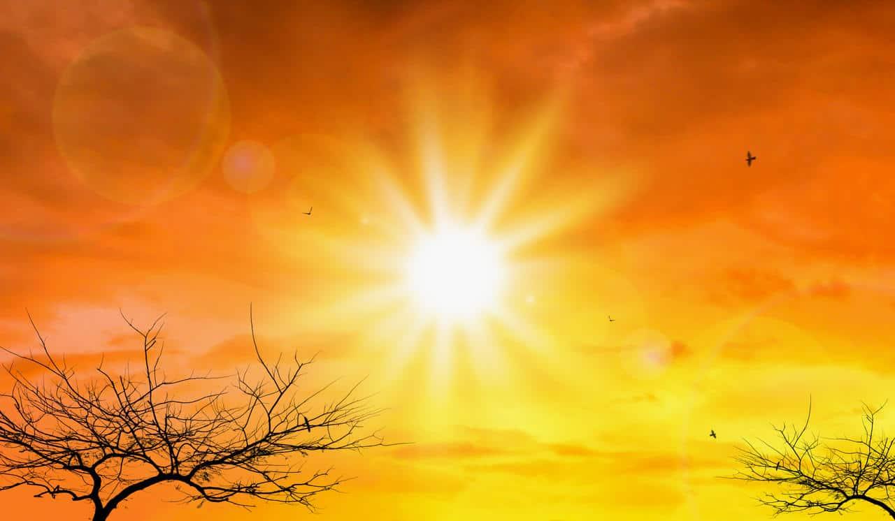 meteo 05066 - ESTATE 2021 è stata la più calda di sempre in Europa