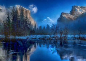 Yellowstone 1633714245 350x250 - Pesce ghiacciolo: l'unico vertebrato in grado di vivere senza emoglobina
