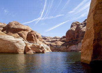 dry lake 1633700503 350x250 - Pesce ghiacciolo: l'unico vertebrato in grado di vivere senza emoglobina